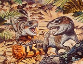 Diarthrognathus and Blabera cockroach Diarthrognathus, a mammal_like reptile, is a small carnivorous therapsid. From the Triassic age of Asia.