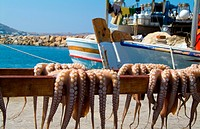 Octopus hangs from a pole on the island of Paros, Greece.