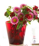 Red glass vase with asters and carnation
