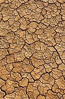 Lucerne Dry Lake, Mojave Desert, California.