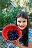 Young girl with red enamel colander of organically grown blueberries
