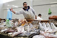 Fish Dealer Tanger Marocco