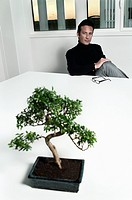 Creative at table musing over bonsai