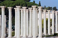 Italy, Rome, Roman Forum, Pillar replica