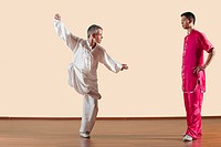 Kung Fu, Tixi liangquan, Two men doing kung_fu moves