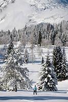 Austria, Tyrol, Seefeld, Wildmoosalm, Woman cross country skiing