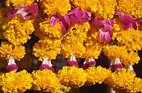 Bangkok (Thailand): garlands sold by the Sri Mariamman Temple Hindu Temple in Silom Road