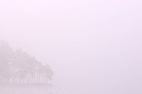 Scandinavia, Sweden, Vastergotland, Molnlycke, View of misty lake