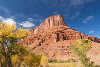 Huge butte with trees turning color in the fall, Utah Scenic Byway 128 near Moab, Utah, USA