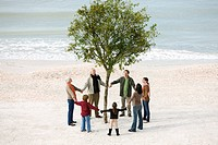 Group of people holding hands in circle around solitary tree on beach