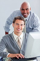 Smiling business partners working at a computer in the office