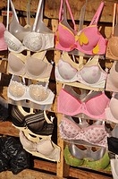 Phnom Penh (Cambodia): bras on sale at the old market