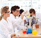 Young scientists working in a laboratory
