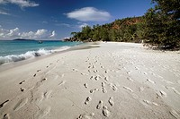 The white sand at Anse Georgette, Praslin Island, Seychelles