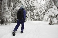 Norway, Oslo, Holmenkollen  Female hiker walking through snow covered forest in the Holmenkollen area near to Tryvann Ski-field