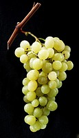 Fruits, grapes