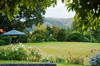 Garden in Gisborne, New Zealand