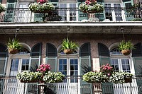 Decorated balcony with plants in New Orleans  in the French Quarter in New Orleans