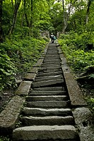 pilgrim path along steep steps to the peak, 1613 metres high, Wudang Shan, Taoist mountain, Hubei province, Wudangshan, Mount Wudang, UNESCO world cul...