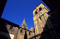 Cathedral of Oviedo Asturias Spain