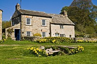 CASTLE BOLTON NORTH YORKSHIRE Wensleydale Yorkshire Dales National Park village cottage daffodils seat