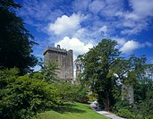 Republic of Ireland, County Cork, Blarney, A view up the hill to Blarney Castle.