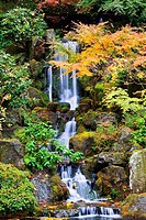 portland, oregon, united states of america, a waterfall in the portland japanese garden in autumn