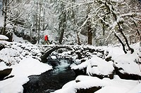 columbia river gorge national scenic area, oregon, united states of america, a person walking over a bridge with snow and a creek