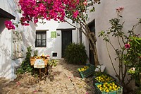 castellar de la frontera, andalusia, spain, flowers and fruit in the street