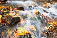 water cascading over the rocks in autumn
