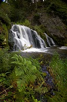 Scotland, Aberdeenshire, Dess Waterfall, Dess Waterfall in mature woodland in Aberdeenshire.