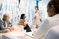 Businesswomen having meeting in office