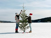 Couple preparing christmas tree