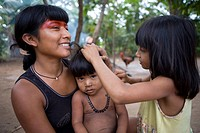 Children of the Xingu Indian are being vaccinated with oral vitamine supplements, Aamzone, Brazil