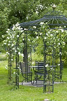 Garden pavilion with white roses