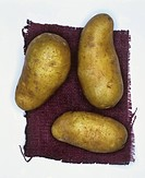 Potatoes, variety: Cilena