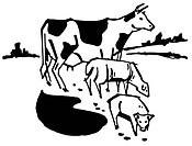 A black and white version of an illustration of a cow