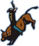 A cowboy on a bull