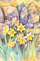 Flower, Watercolor painting of beautiful wildflowers