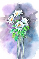 Flower, Watercolor painting of flowers
