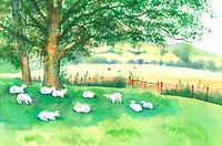 Animal, Watercolor painting of goats resting on the lawn (thumbnail)