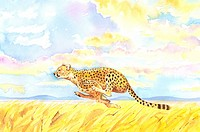 Animal, Watercolor painting of a leopard running on prairie