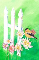 Animal, Watercolor painting of a bird perching on the flowers