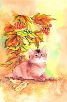 Animal, Watercolor painting of a cute cat resting