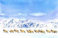 Animal, Watercolor painting of a group of deer walking on the snow