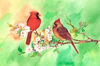 Animal, Watercolor painting of two birds perching on branch with flowers