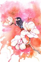Animal, Watercolor painting of a bird perching with flowers