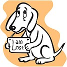 A dog holding an I Am Lost sign