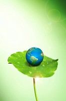 Lohas, Environmental Conservation, Digitally generated image of globe on the green lily pad (thumbnail)