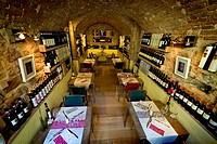 Drinking wine restaurant, Spello, Perugia province, Umbria